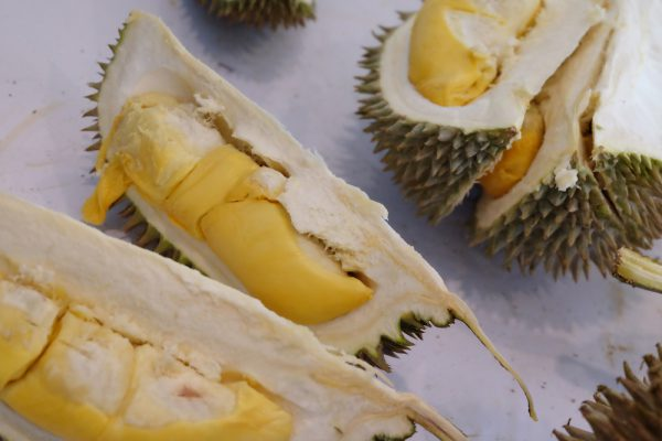 13 September 2019: Durian craze threatening Malaysian rainforest; Smart cities in 5 years
