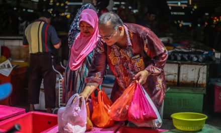 26 June 2020: 'Social pension' for elderly a good start; Malaysia losing much-needed talent